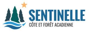 Côte et forêt acadienne